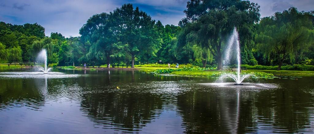 滨州Willows park,享受生活_图1-3