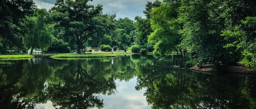 滨州Willows park,享受生活_图1-2