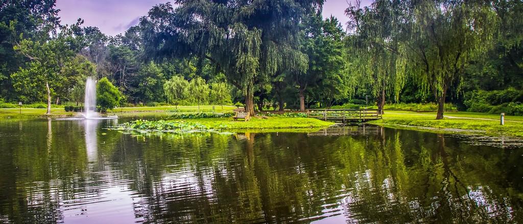 滨州Willows park,享受生活_图1-6
