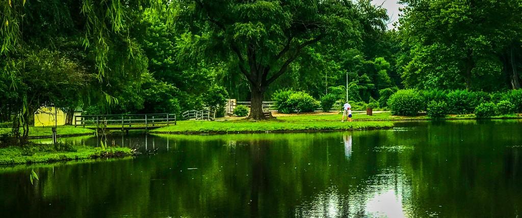 滨州Willows park,享受生活_图1-9