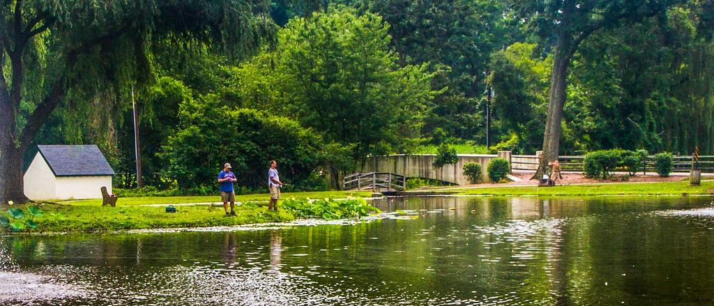 滨州Willows park,享受生活_图1-4