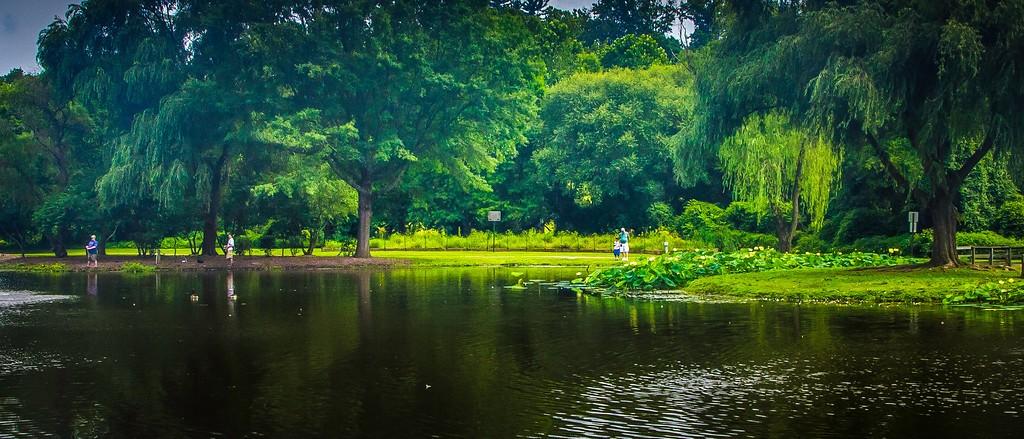 滨州Willows park,享受生活_图1-10