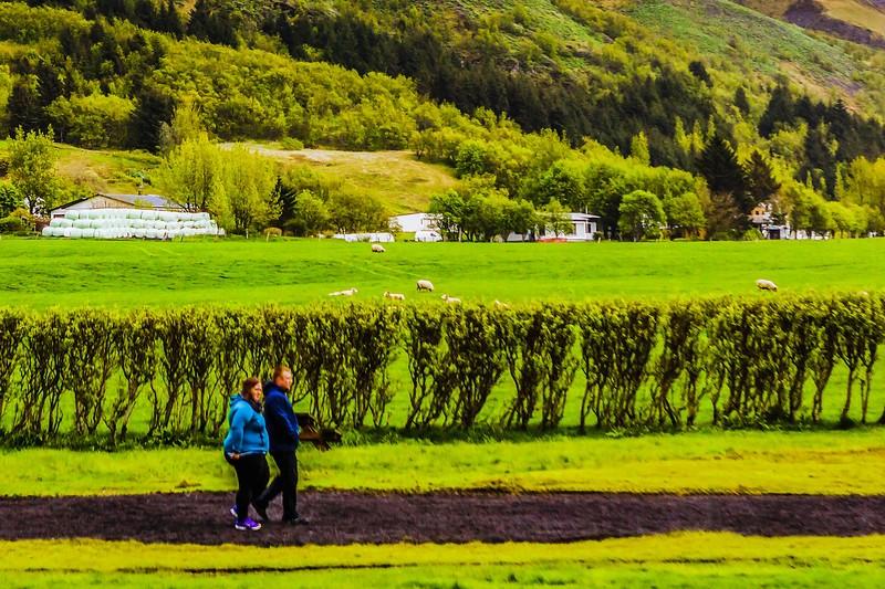 冰岛Skógafoss瀑布,飞流直下_图1-8