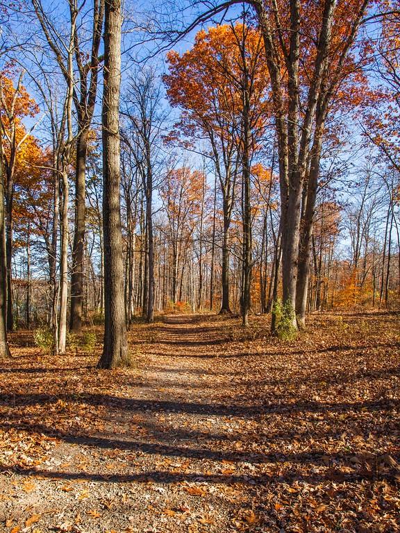 宾州 French Creek State Park,迷人秋季_图1-6