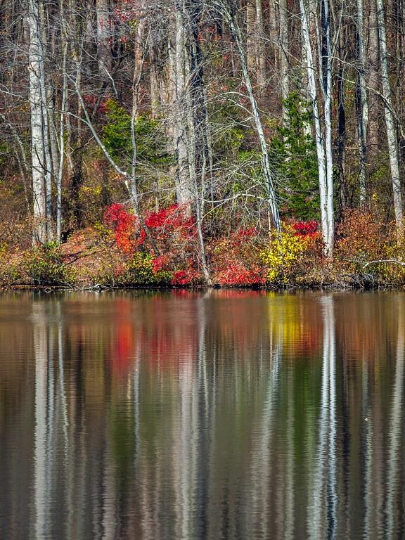 宾州 French Creek State Park,迷人秋季_图1-3