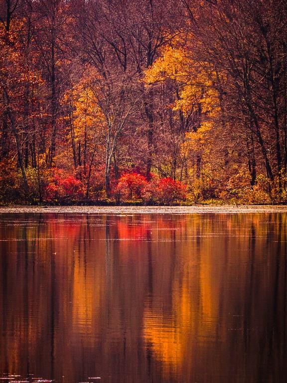宾州 French Creek State Park,迷人秋季_图1-1