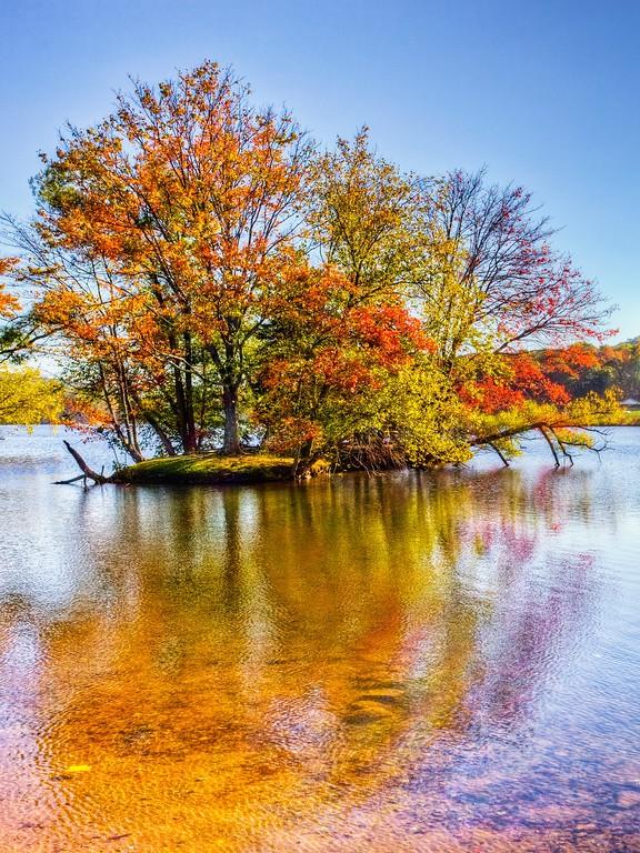 宾州 French Creek State Park,迷人秋季_图1-14