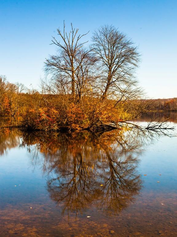 宾州 French Creek State Park,迷人秋季_图1-16
