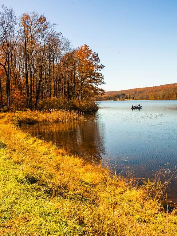 宾州 French Creek State Park,迷人秋季_图1-19