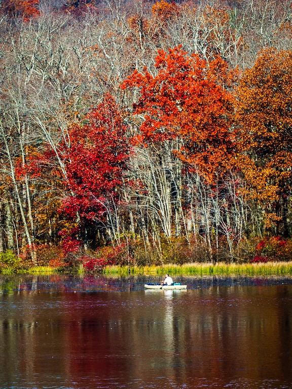 宾州 French Creek State Park,迷人秋季_图1-17