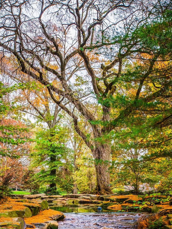 宾州长木公园,选景印象_图1-8