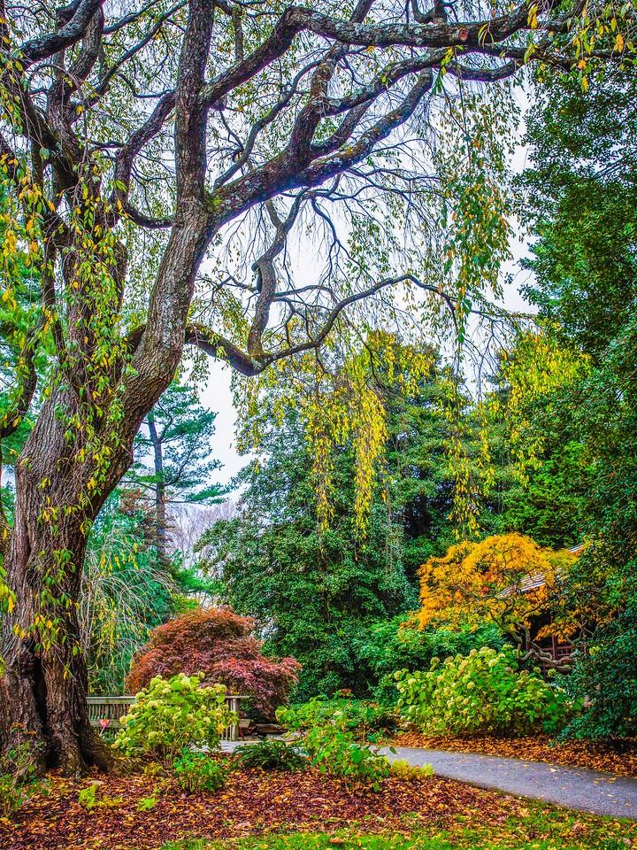 宾州长木公园,选景印象_图1-19
