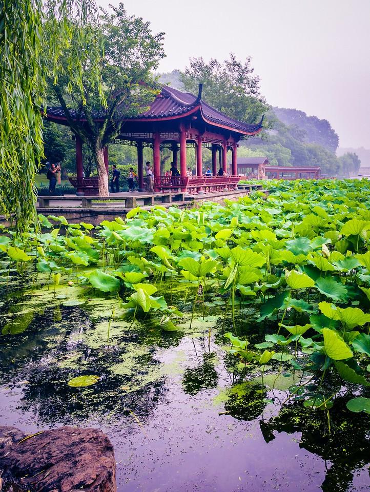 杭州西湖,宝塔小桥楼亭_图1-6