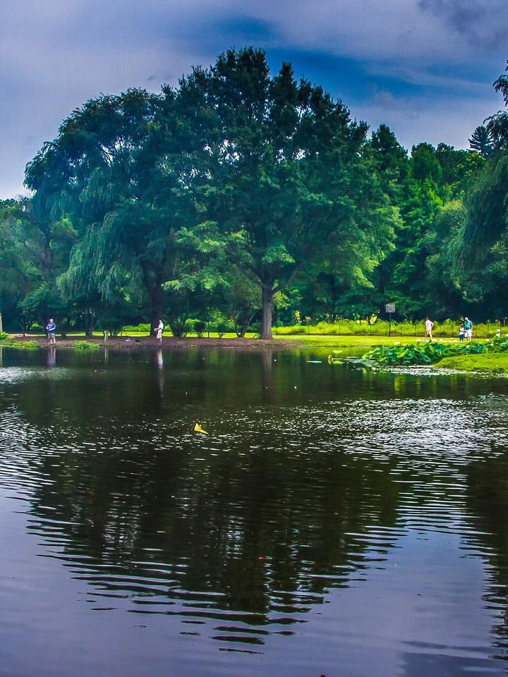 滨州Willows park,湖中喷泉_图1-6
