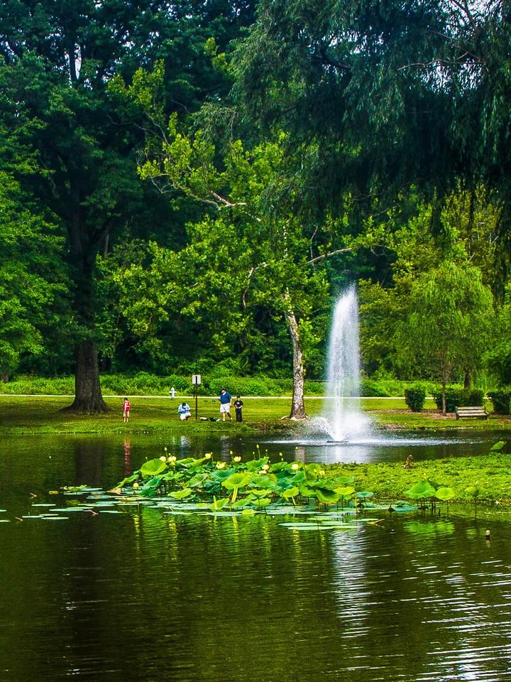 滨州Willows park,湖中喷泉_图1-7