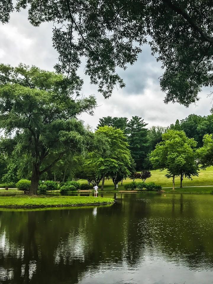 滨州Willows park,湖中喷泉_图1-11