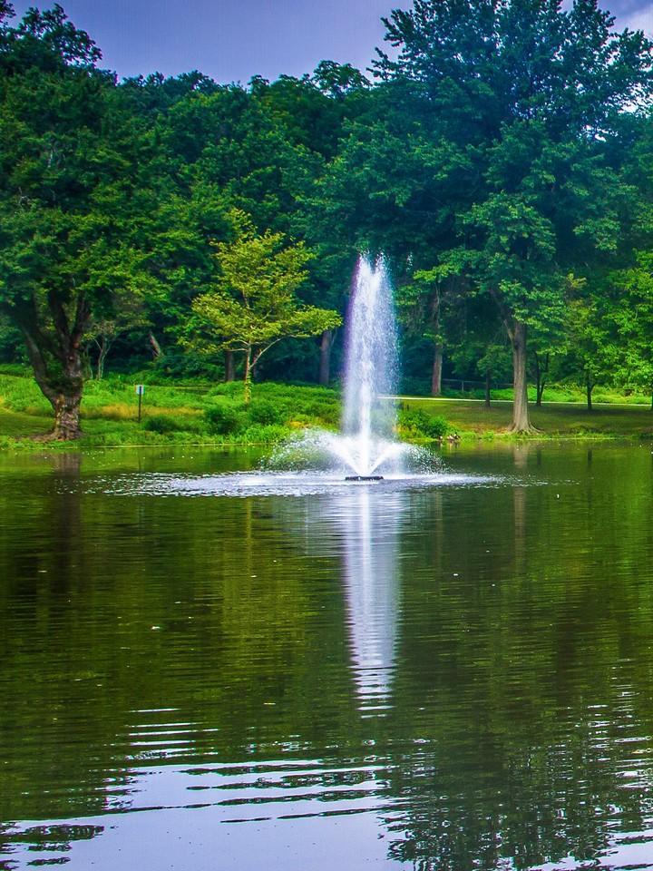 滨州Willows park,湖中喷泉_图1-10
