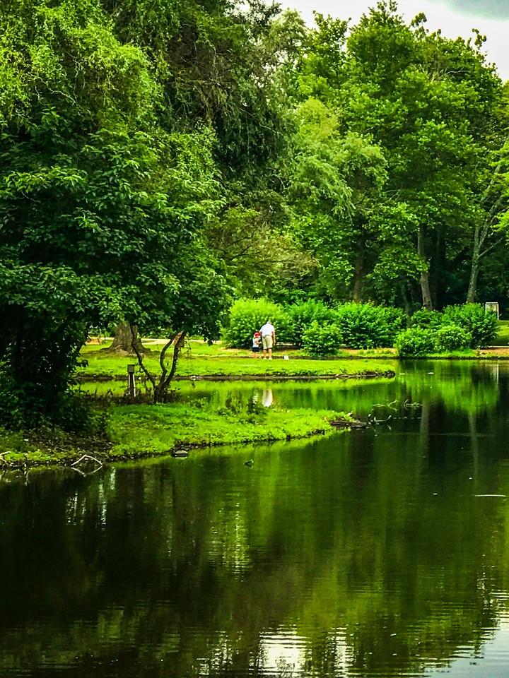 滨州Willows park,湖中喷泉_图1-15