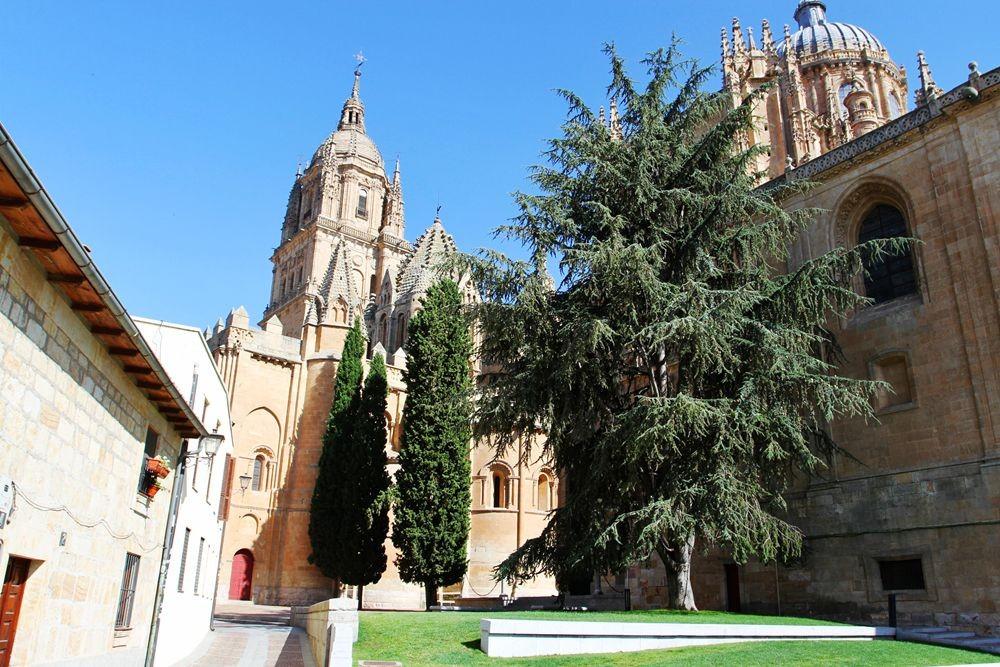 萨拉曼卡-西班牙金城的古代历史_图1-7