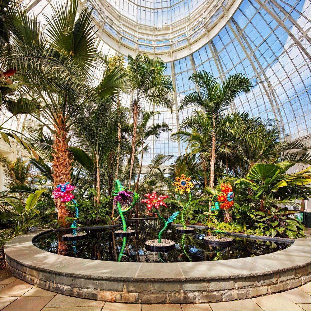 """""""宇宙自然""""在纽约植物园_图1-6"""