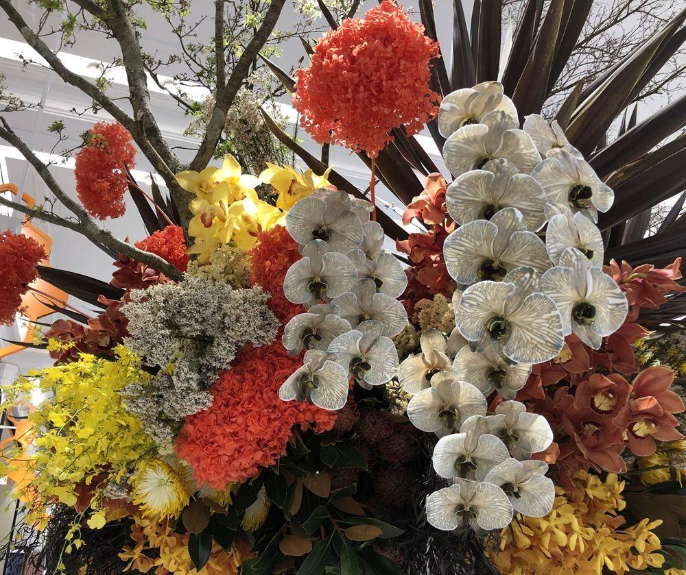 花卉日记之23_图1-21