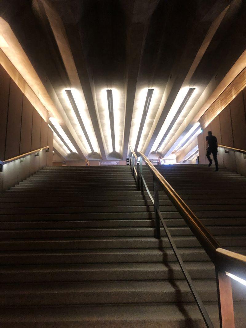 2020雪梨歌剧院_图1-5