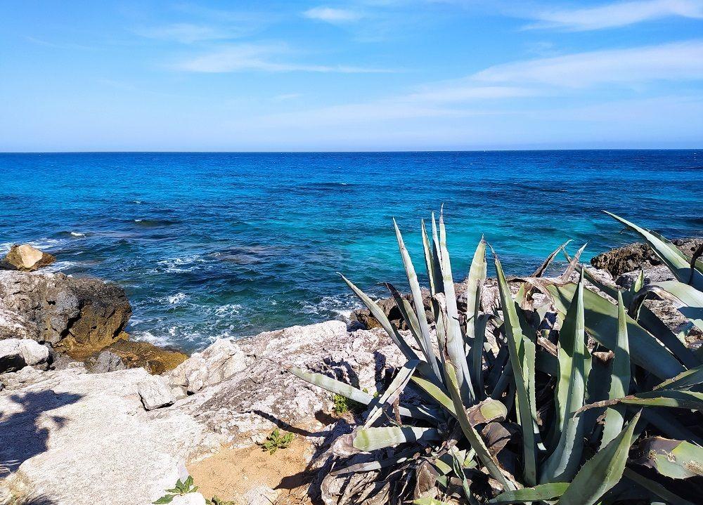 马略卡岛度假--2_图1-8
