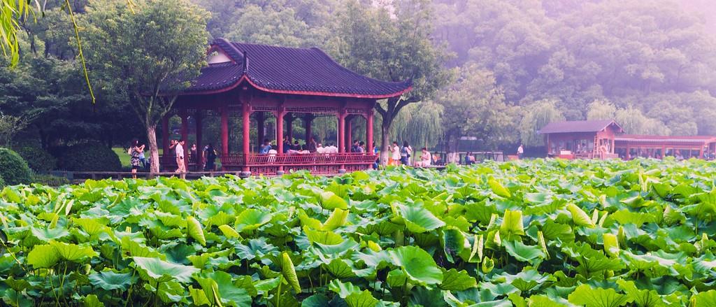 杭州西湖,朦胧景色_图1-1