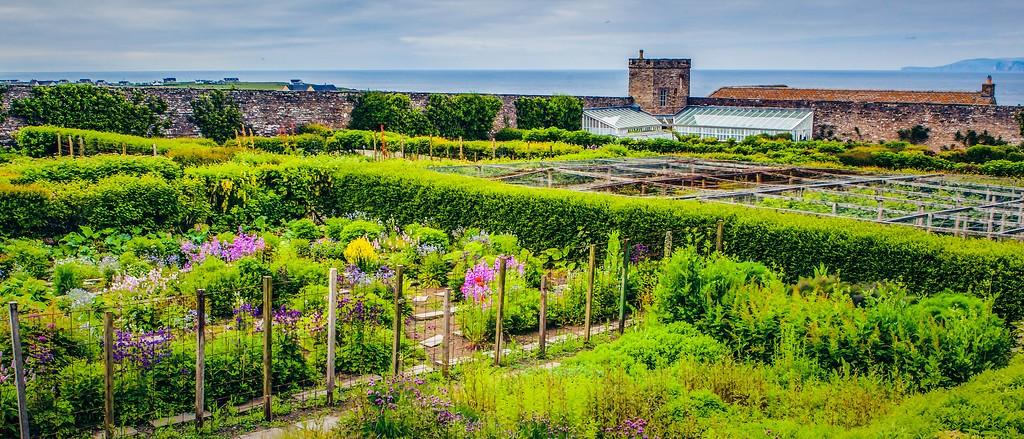苏格兰梅城堡(Castle of Mey),十六世纪城堡_图1-9