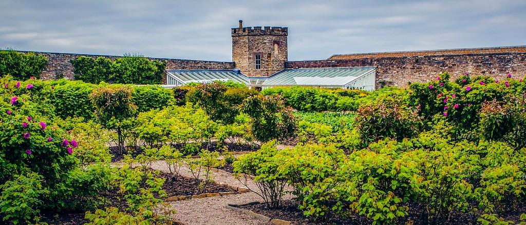 苏格兰梅城堡(Castle of Mey),十六世纪城堡_图1-18
