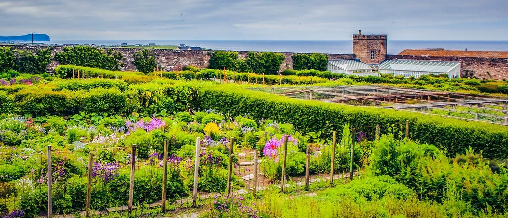 苏格兰梅城堡(Castle of Mey),十六世纪城堡_图1-24