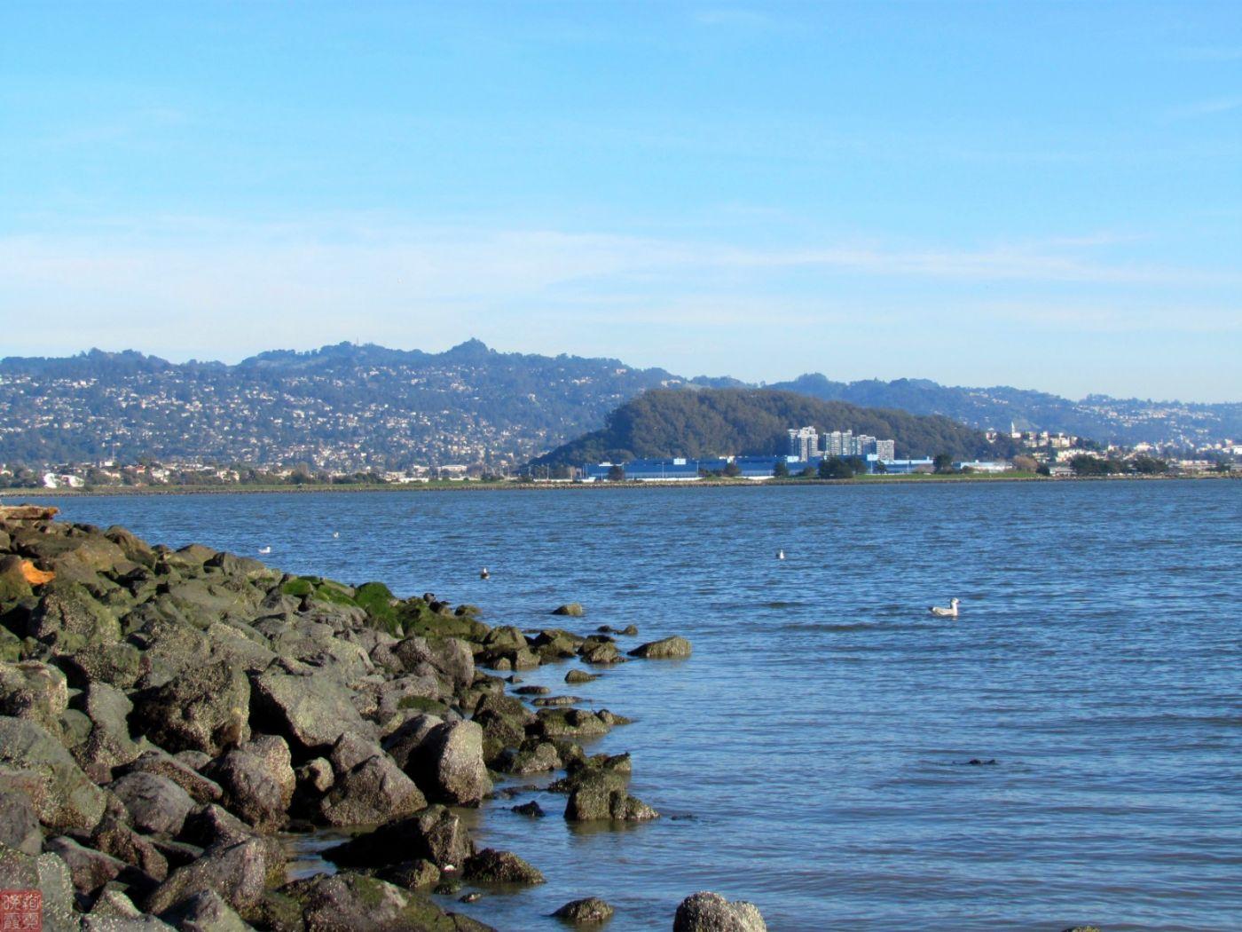 加州湾区风光_图1-14
