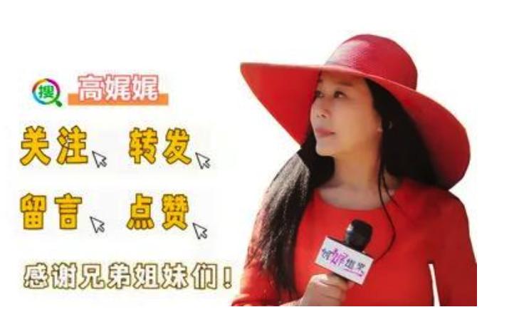 """高娓娓:""""外国军官""""专骗中国离婚女性!揭秘跨国网恋最常见骗局 ..._图1-5"""