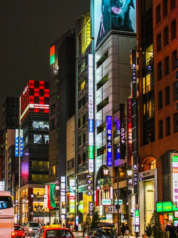 日本印象,东京夜景_图1-5