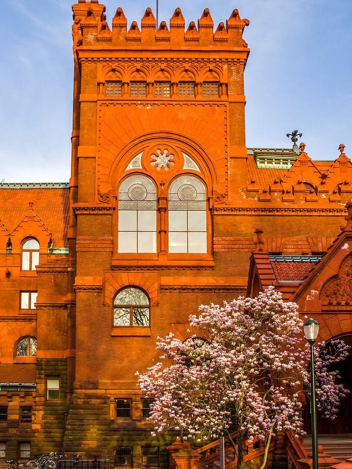 美国费城宾夕法尼亚大学,校园建筑_图1-13