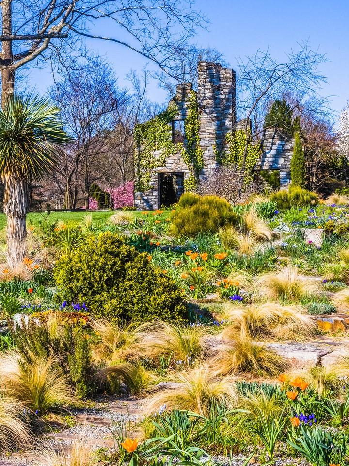 Chanticleer花园,春色乍现_图1-16