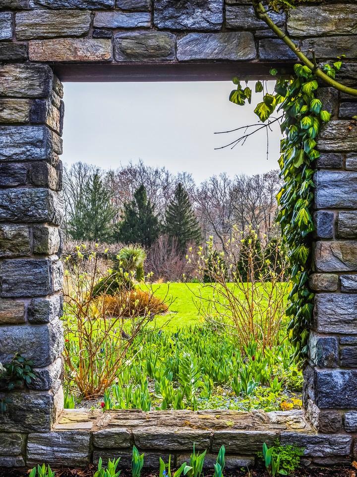 Chanticleer花园,春色乍现_图1-15