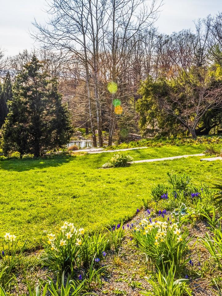 Chanticleer花园,春色乍现_图1-19
