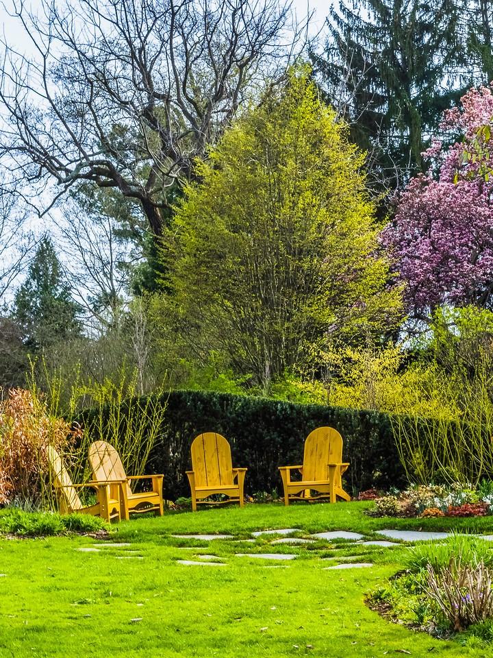 Chanticleer花园,春色乍现_图1-22