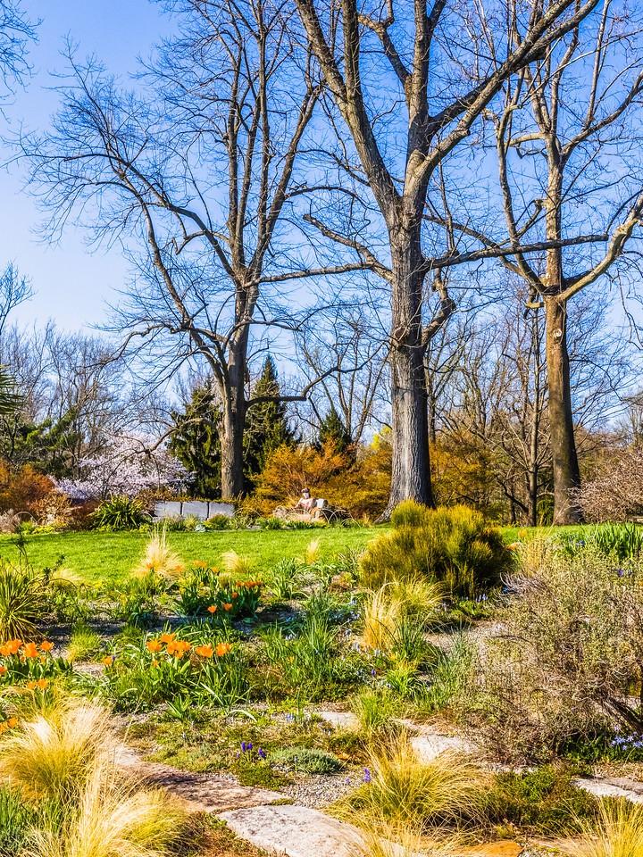 Chanticleer花园,春色乍现_图1-18