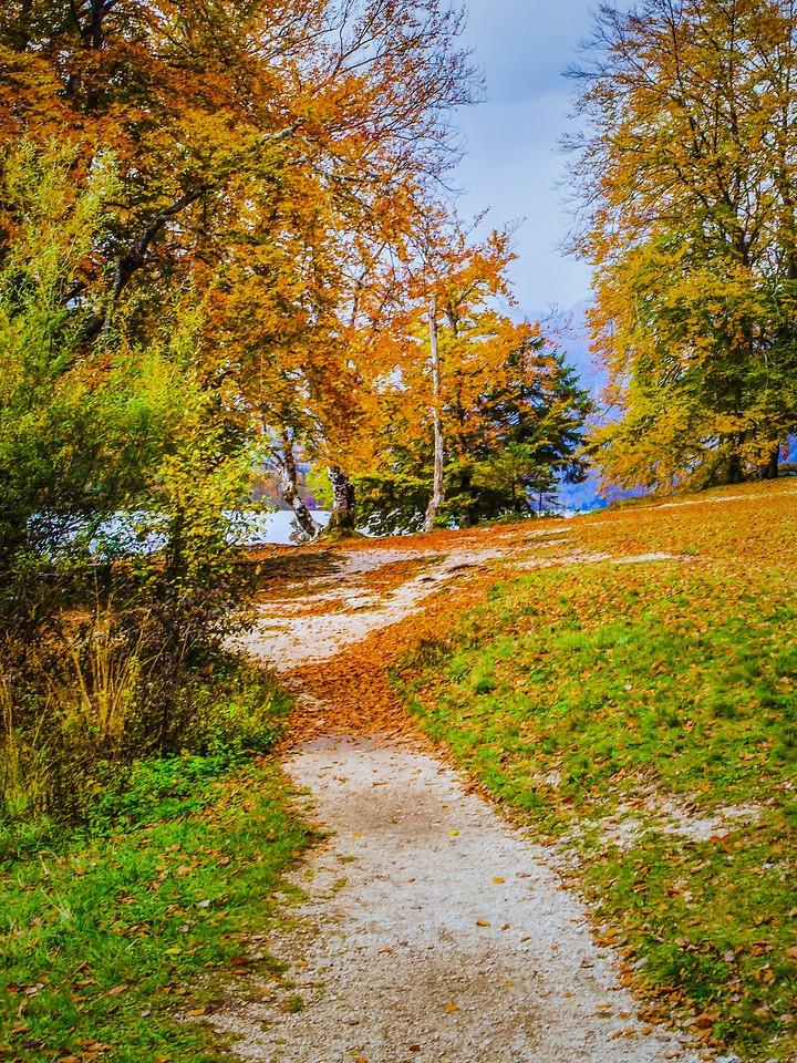 斯洛文尼亚博希尼湖(Lake Bohinj),秋色浓浓_图1-10