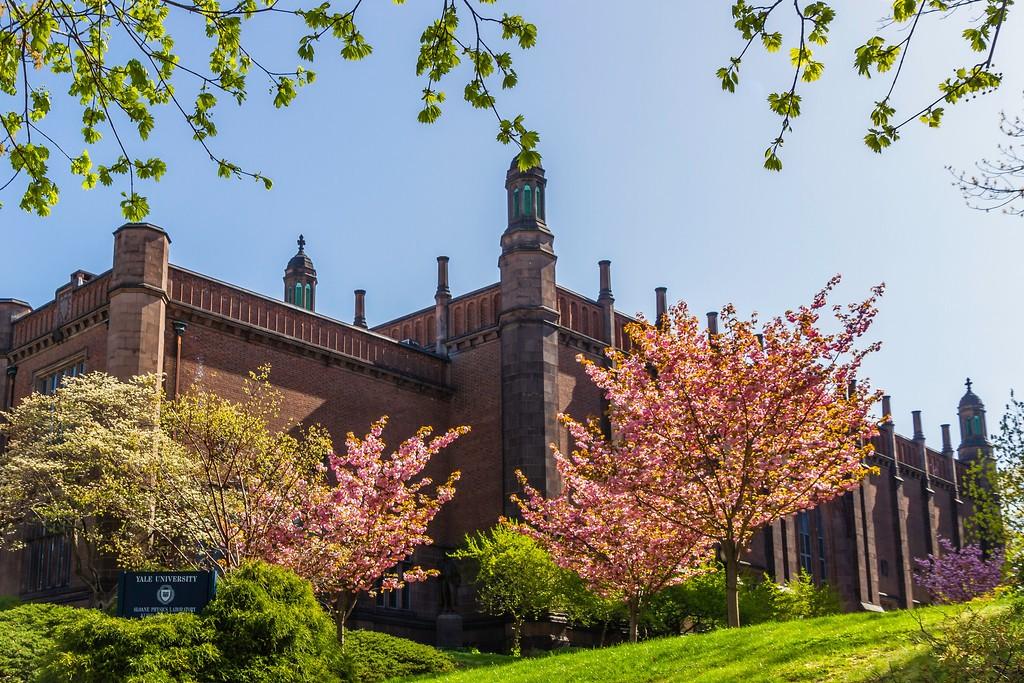 美国耶鲁大学,校园建筑_图1-2