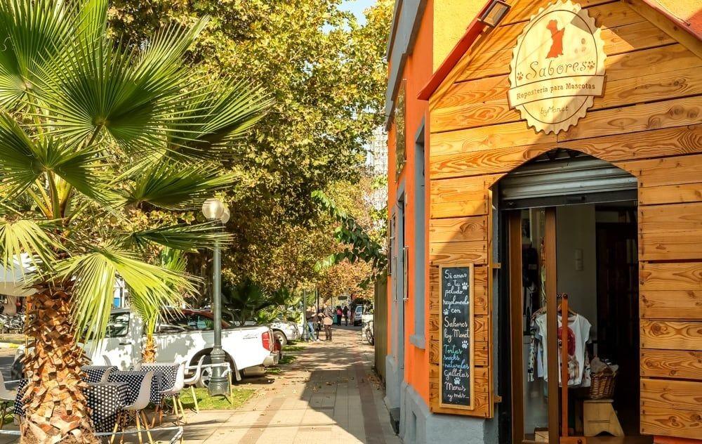 智利圣地亚哥的一天---2_图1-6