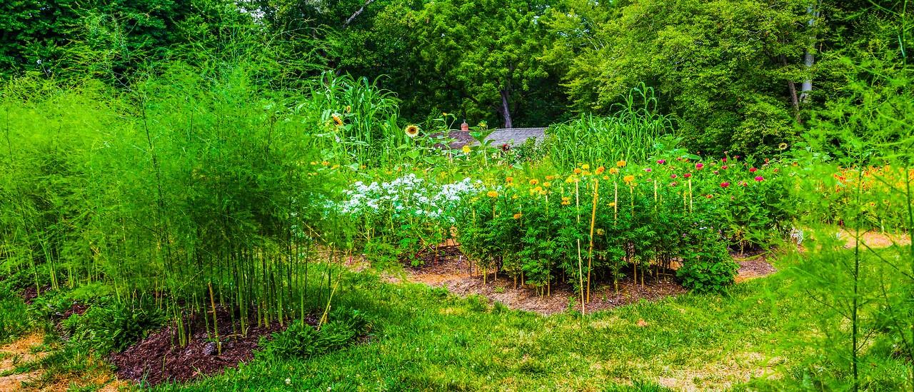 Chanticleer花园,春天气息_图1-19