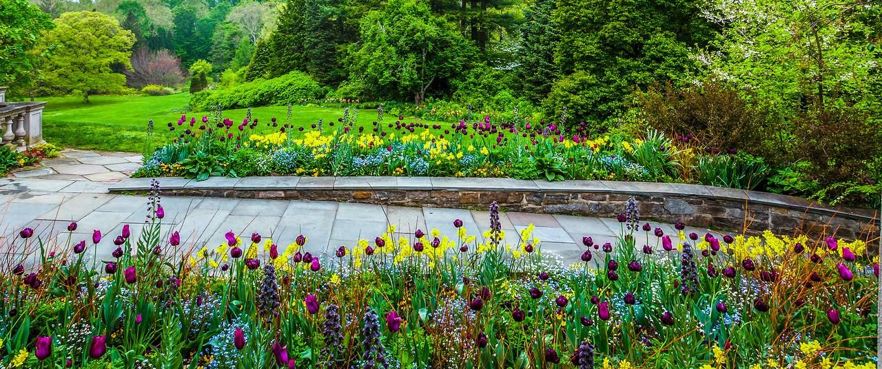 Chanticleer花园,春天气息_图1-17