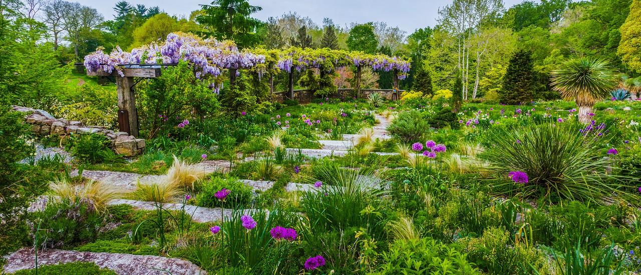 Chanticleer花园,春天气息_图1-18