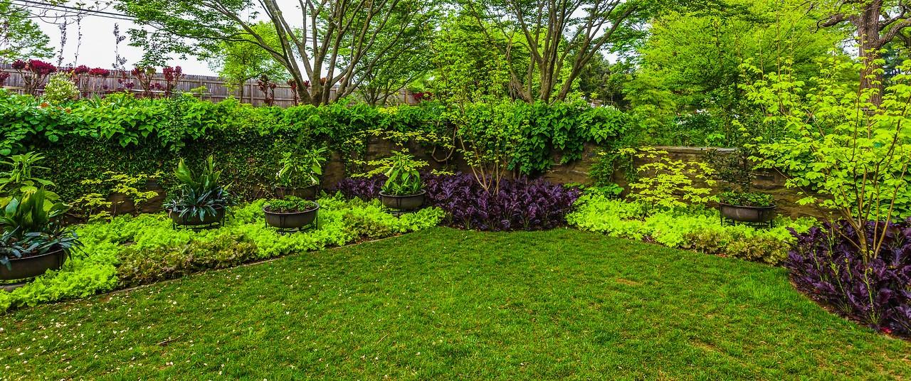 Chanticleer花园,春天气息_图1-14