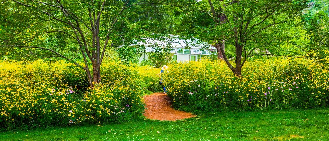 Chanticleer花园,春天气息_图1-7