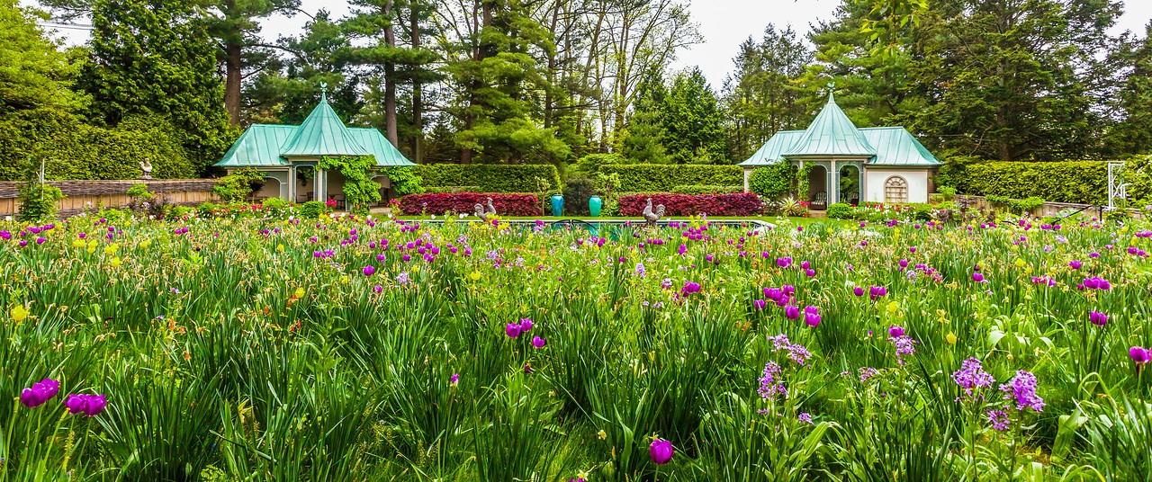 Chanticleer花园,春天气息_图1-3