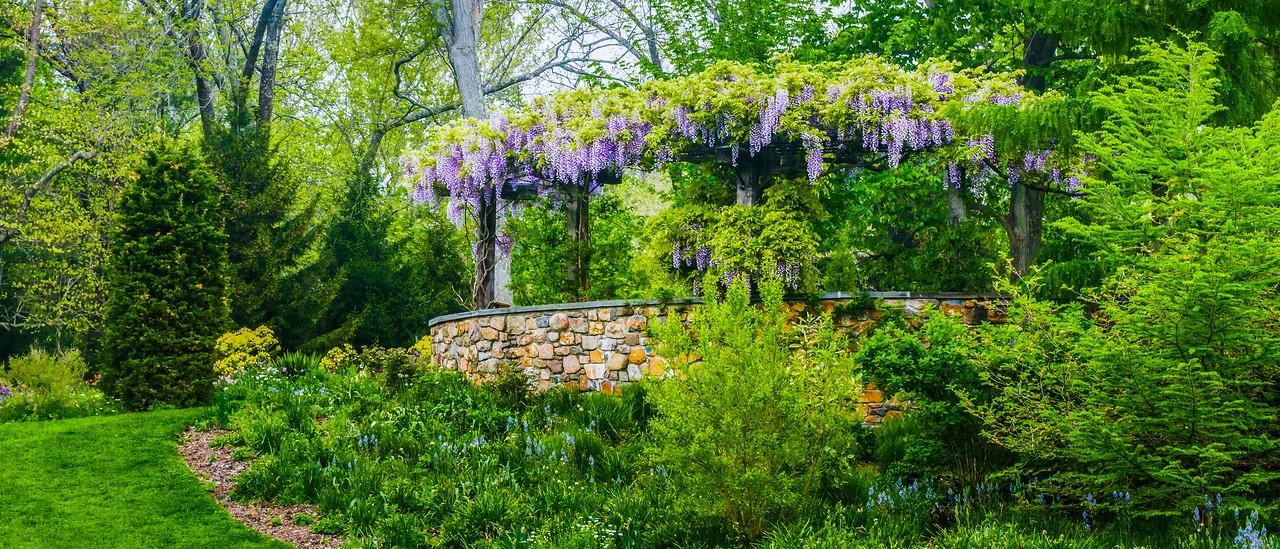 Chanticleer花园,春天气息_图1-24